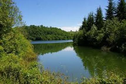 Forêt de Fabas et lac de Saint André à proximité du Camping Le Casties